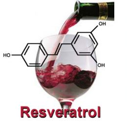 resveratrol1 Resveratrol Skin Benefits for Beautification
